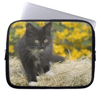 Black & white short-haired kitten on hay bale, 2 laptop sleeve