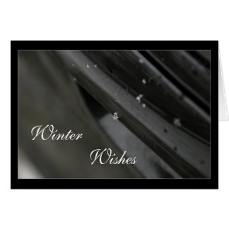 Black & White Snowflake Photo Holiday Cards