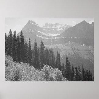Black & White Trees & Mountains Poster