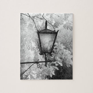 Black & White view of light fixture Jigsaw Puzzle