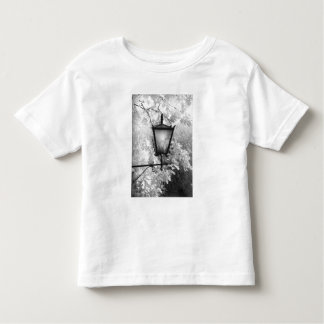 Black & White view of light fixture Toddler T-Shirt