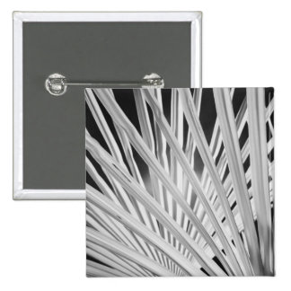 Black & White view of palm tree fronds 15 Cm Square Badge