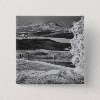 Black & White view of winding road 15 Cm Square Badge
