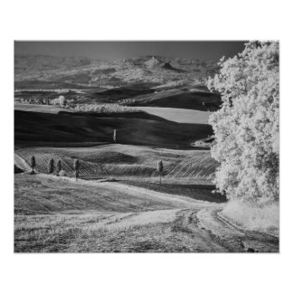 Black White view of winding road Posters