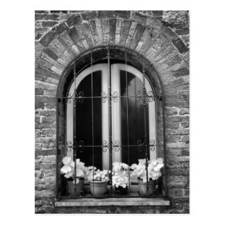 Black & White view of window and flower pots Postcard