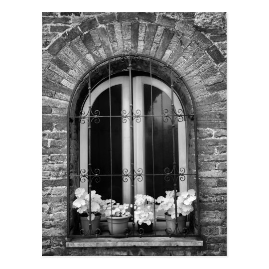 Black & White view of window and flower