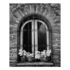 Black & White view of window and flower pots Poster