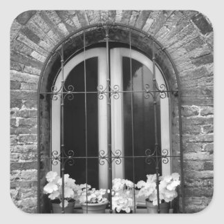 Black & White view of window and flower pots Square Sticker