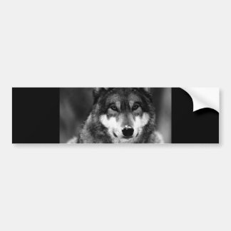 Black & White Wolf Bumper Sticker