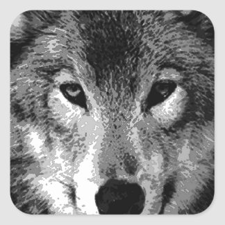 Black & White Wolf Eyes Square Sticker