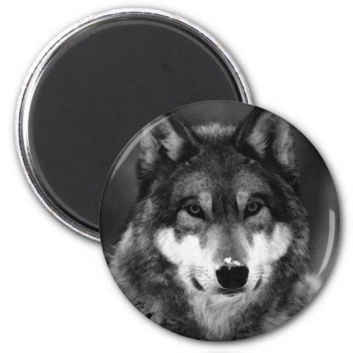 Black & White Wolf Magnet
