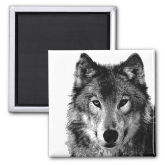 Black & White Wolf Portrait Square Magnet