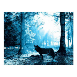 Black Wolf Alone in the Forest Postcard