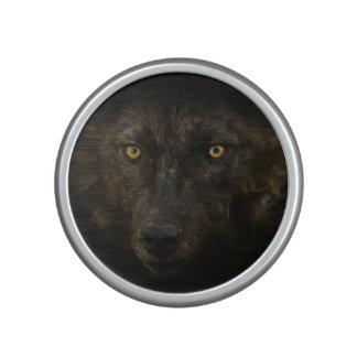 Black Wolf Wild Animal Wildlife Speaker