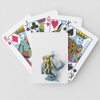 Black, Yellow and Blue Poison Dart Frog Bicycle Playing Cards
