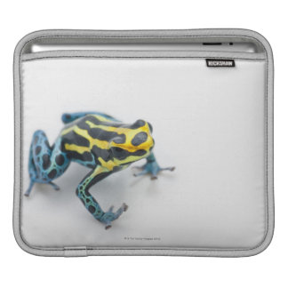 Black, Yellow and Blue Poison Dart Frog iPad Sleeve