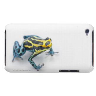 Black, Yellow and Blue Poison Dart Frog iPod Touch Case