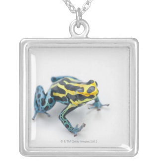 Black Yellow and Blue Poison Dart Frog Necklaces