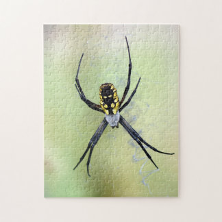 Black & Yellow Argiope Garden Spider Puzzle