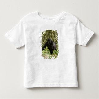 Blackback walking through bamboo forest toddler T-Shirt