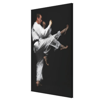 Blackbelt Doing a Front Kick Canvas Print