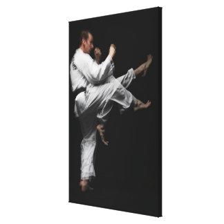 Blackbelt Doing a Front Kick Canvas Print
