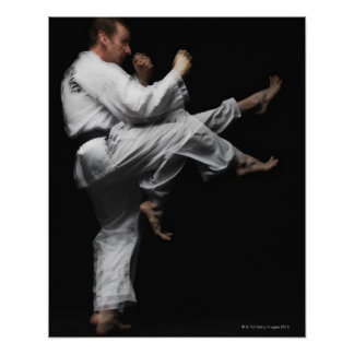 Blackbelt Doing a Front Kick Poster