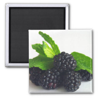 Blackberries and Mint Square Magnet