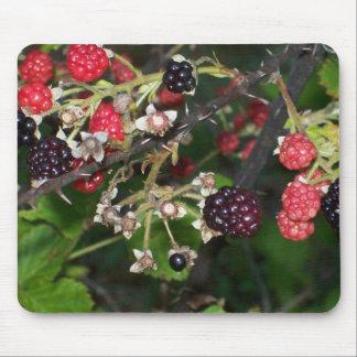 Blackberries at Dusk Mouse Pad