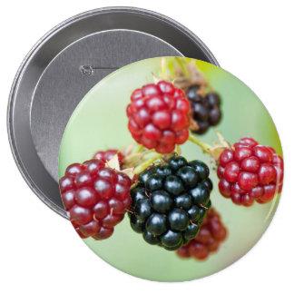 blackberries 10 cm round badge
