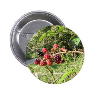 Blackberries bunch 6 cm round badge