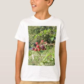 Blackberries bunch shirt