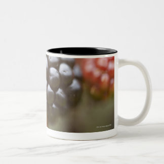 Blackberries close up. Two-Tone coffee mug