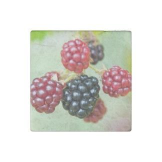 blackberries stone magnet