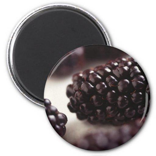 Blackberries Refrigerator Magnet