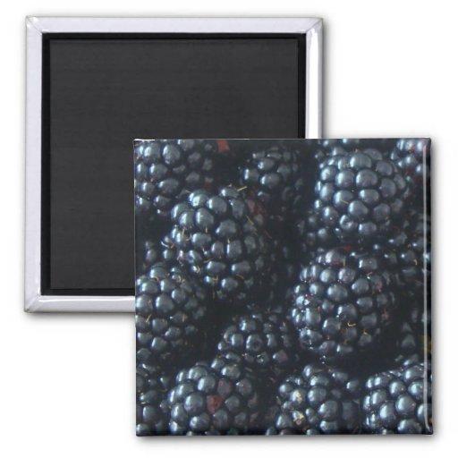 Blackberries Magnet