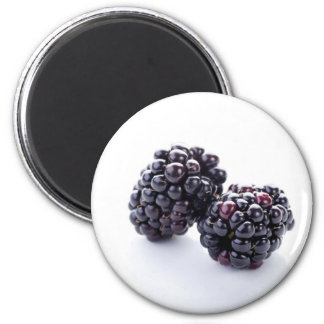 Blackberries Magnet