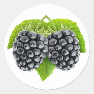 Blackberries on leaves round sticker