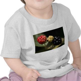 Blackberries Shirt