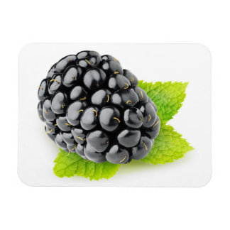 Blackberry and mint magnet