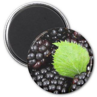 BlackBerry Background Refrigerator Magnet