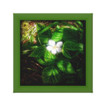 Blackberry Bloom Gallery Wrapped Canvas