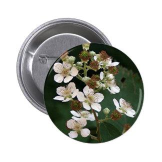 Blackberry blossoms in flower 6 cm round badge