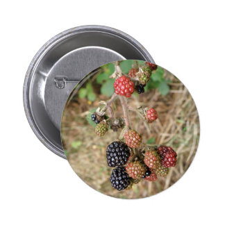 Blackberry Bonanza Button