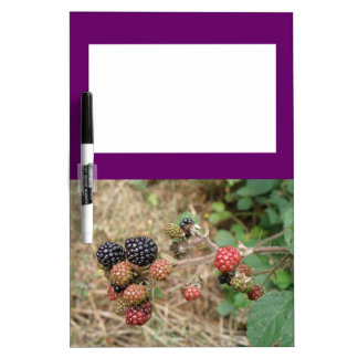 Blackberry Bonanza Memo Board