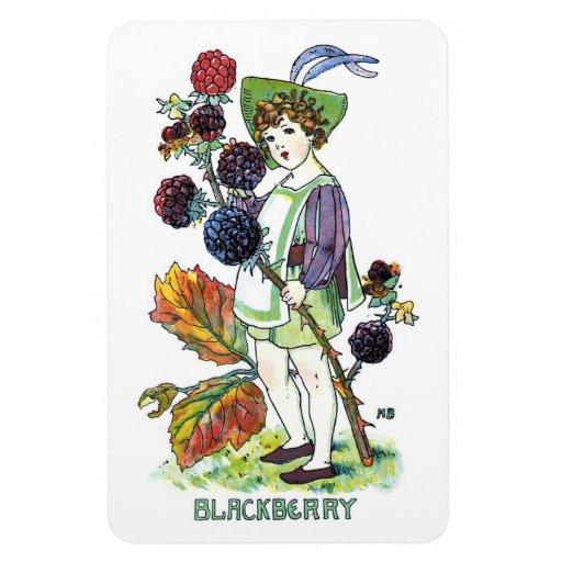 Blackberry Boy Vinyl Magnets