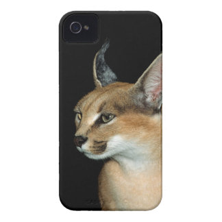 blackberry - caracal iPhone 4 Case-Mate cases