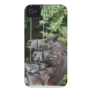 Blackberry Case two Frysian Horses