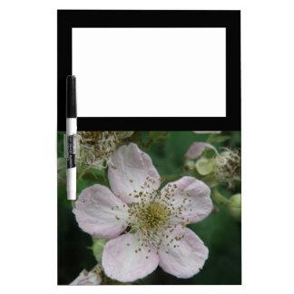 Blackberry Flower Macro Memo Board