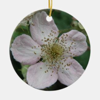 Blackberry Flower Macro Ornaments